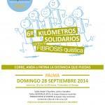 Cartel Kilómetros Solidarios 2014