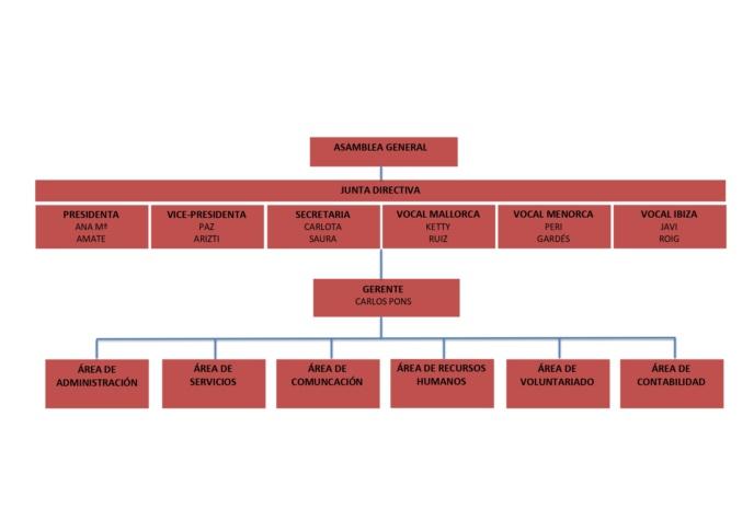 Organigrama Asociacion Balear de Fibrosis Quistica